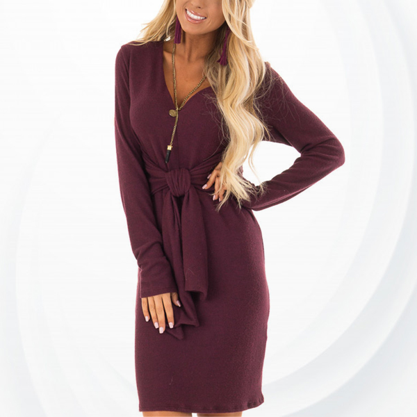 Mesh Texture Waist Knotted Mini Dress - Burgundy