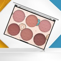 Six Shade Fine Quality Face Blush - Shade II