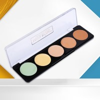 Five Shades Different Color Face Blush Palette