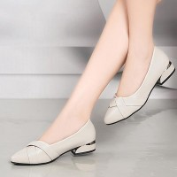 Short Heel Pointed Toe Work Office Flats - Beige